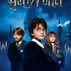 affiche Show Harry Potter