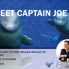 affiche MEET CAPTAIN JOE !